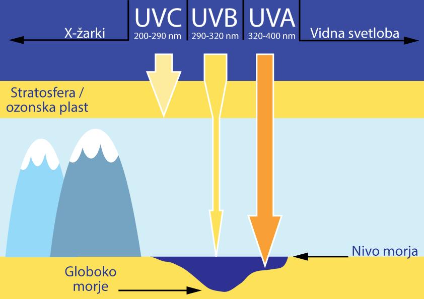 UV zarki1