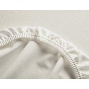 Cotonea Rjuha Edel-Biber | Natur | Več velikosti