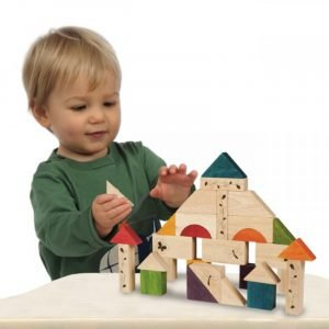 Wonderworld Lesene kocke | Gradimo in se učimo